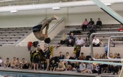 Athlete Q and A: Isaiah Winston – Diving