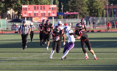 Links Football plans to go 'Hawk Hunting' this Friday